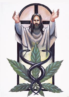 Jesus Marijuana